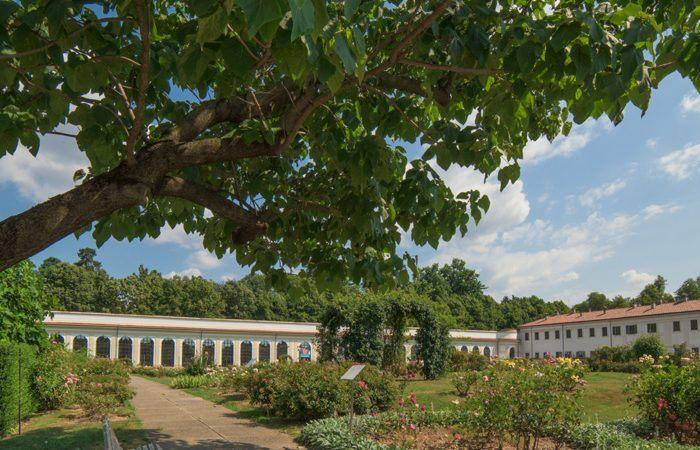 Il Serrone della Villa Reale ospiterà la Biennale Giovani Monza 2017